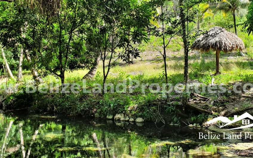 CY104:1.2 Acre with Creek and side of a hill in Unitedville Village, Cayo District!