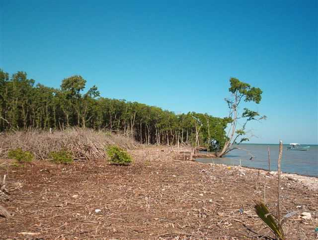 SC104: REDUCED! 27.186 Acres subdivided into 14 Lots with 2,042 Feet on Caribbean Sea! Colson Point Stann Creek