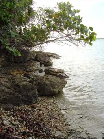 CZ71: Belize Beachfront For Sale- 4.692 Acres with over 300 Feet of Seafront, Lowry's Bight, Corozal!