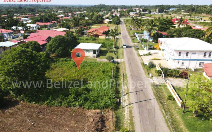 CY110: REDUCED! Vacant Lot in Cohune Walk Belmopan City, Cayo