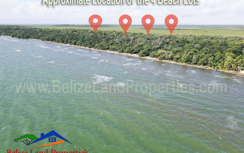 BZ163: 4 Beachfront Lots North of Sibun River, Belize District! Near 4 Cruise Ship Terminal!